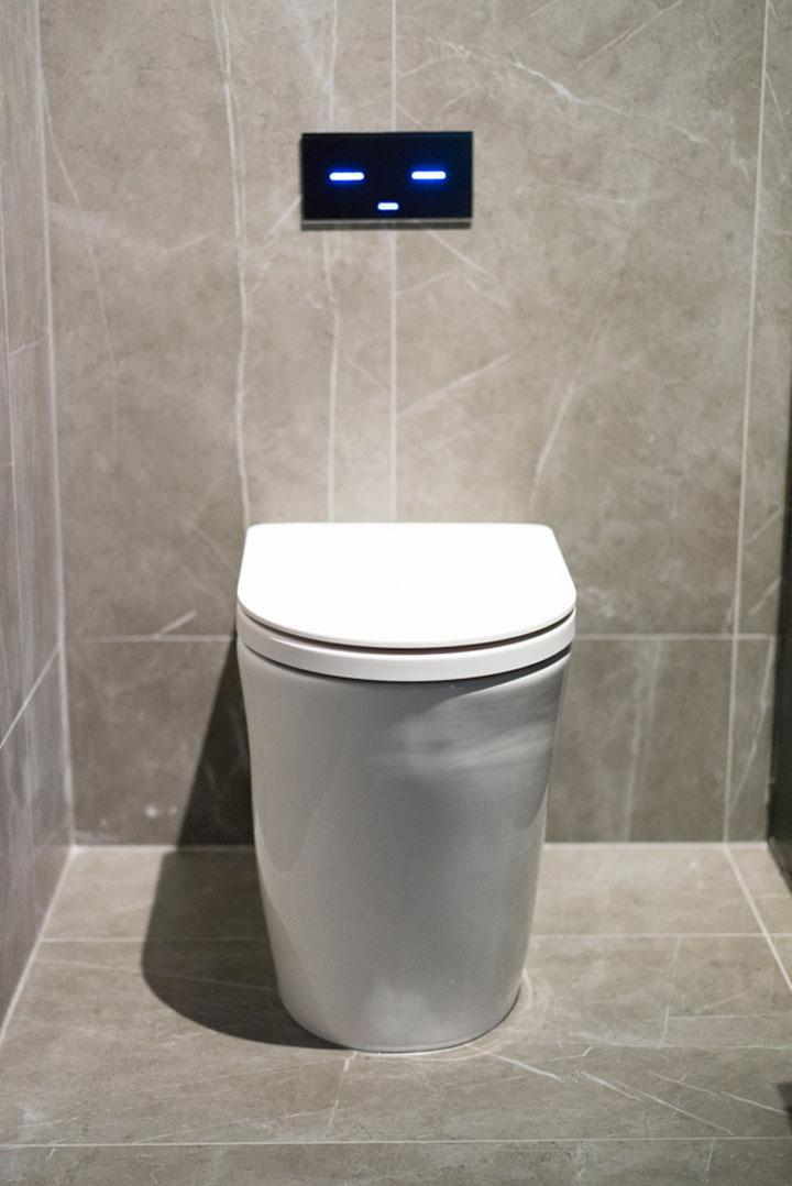 Caroma toilet